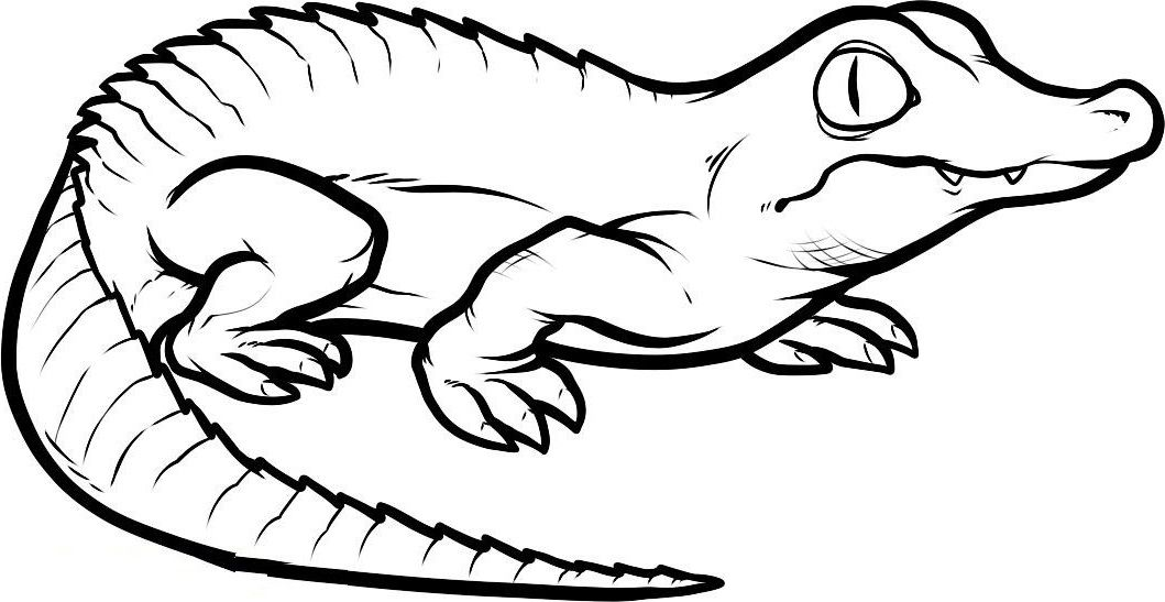 Small Crocodiles The Threatening Crocodiles Pinterest Kids net - new alligator coloring pages to print