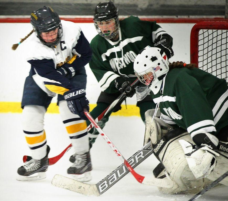 H.S. ROUNDUP Fontbonne hockey wins Winter sports
