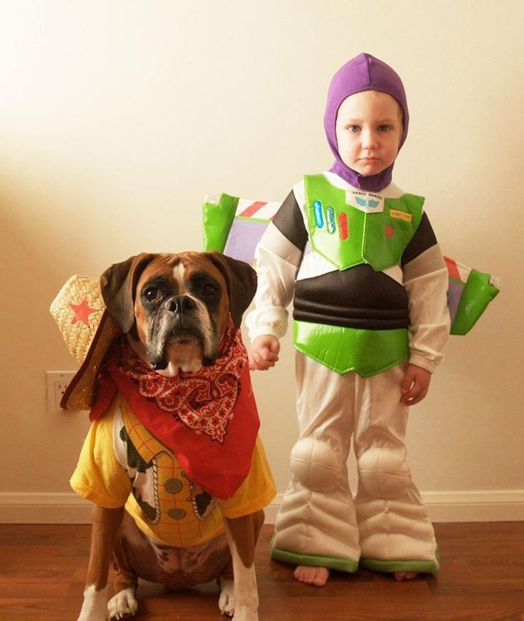 47 Cute Fun And Scary Halloween Costumes For Your Boxer Dog