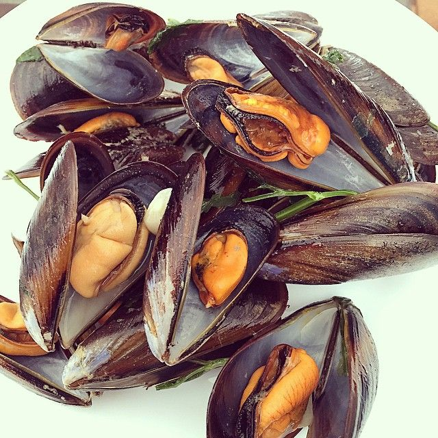 For my lunch today I ate mussels  it was delicious