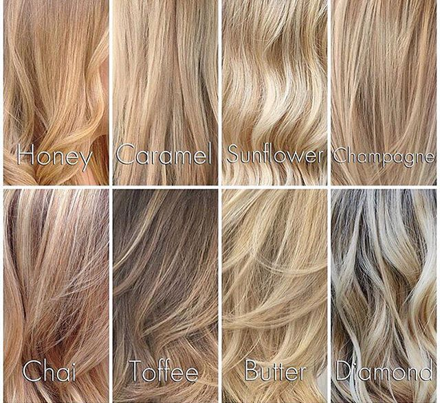 Best 25 Blonde Tones Chart Ideas On Pinterest Hair