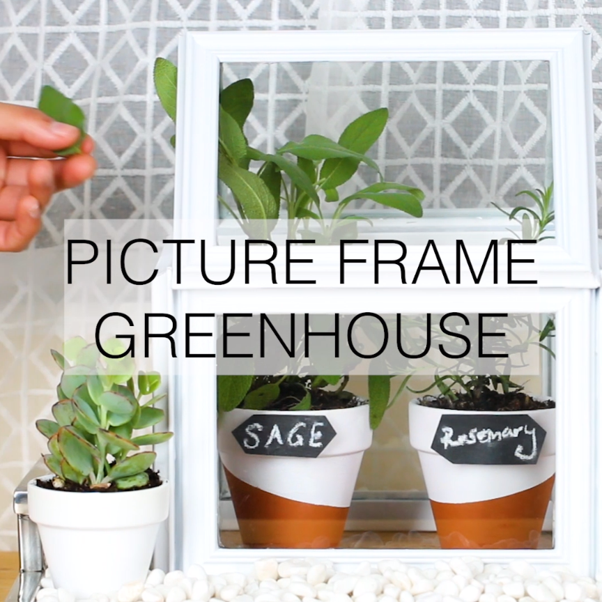 Photo of Picture Frame Greenhouse #DIY #gardening #plants #home