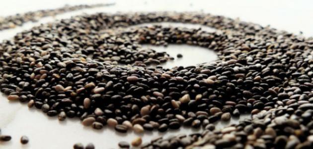 فوائد بذور الشيا للتنحيف موسوعة موضوع Chia Seeds Benefits Eating Chia Seeds Chia Benefits