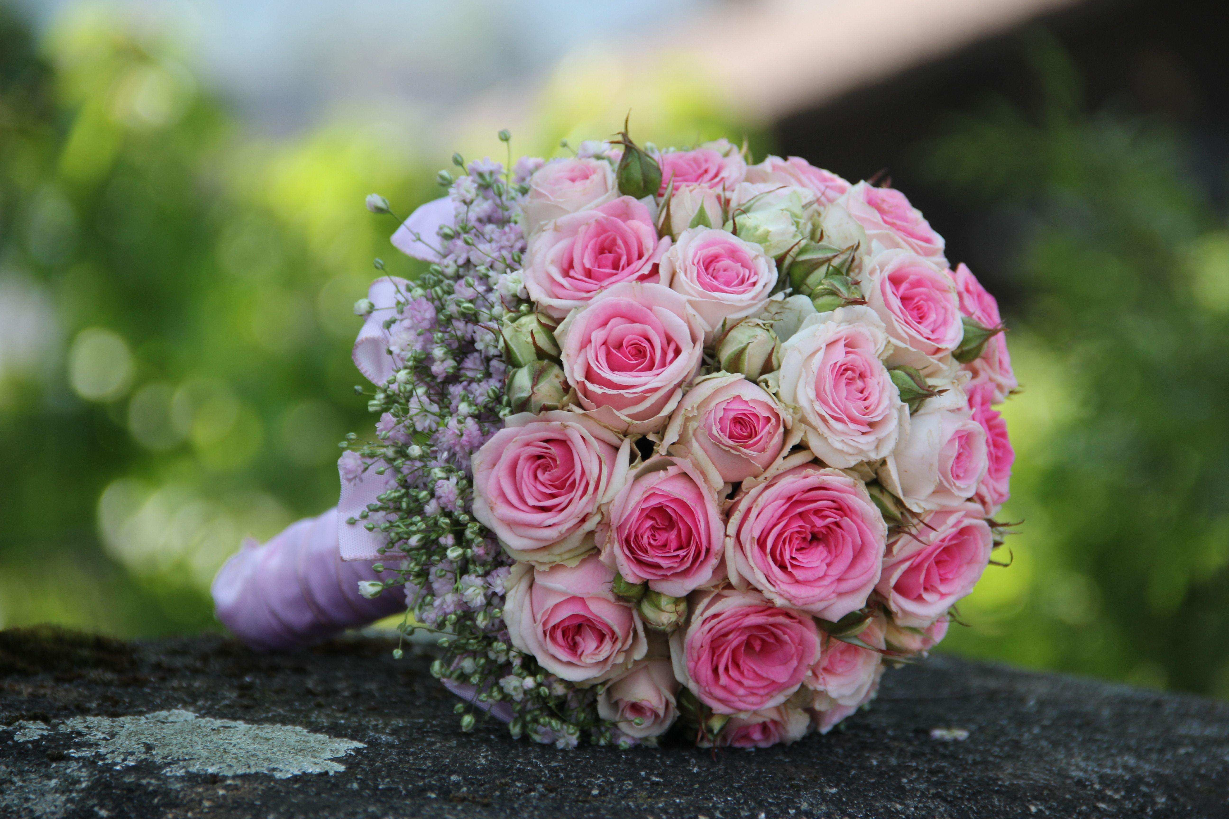 Rosenkugel Rosa Weiss Mimi Eden Rosen Umrandet Mit Schleierkraut Blumenstrauss Hochzeit Brautstrausse Hochzeit Strauss