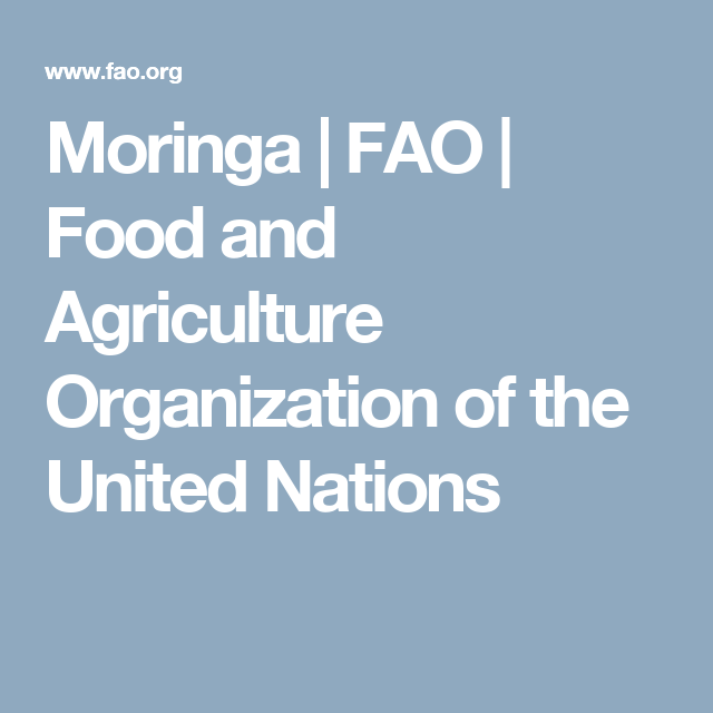 moringa fao food and agriculture organization of the united rh pinterest com