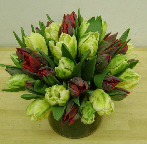 This is a floral arrangement that features red and green parrot tulips. See our entire selection at www.starflor.com.  To purchase any of our floral selections, as gifts or décor, please call us at 800.520.8999 or visit our e-commerce portal at www.Starbrightnyc.com. This composition of flowers is generally available for same day delivery in New York City (NYC).  LV018