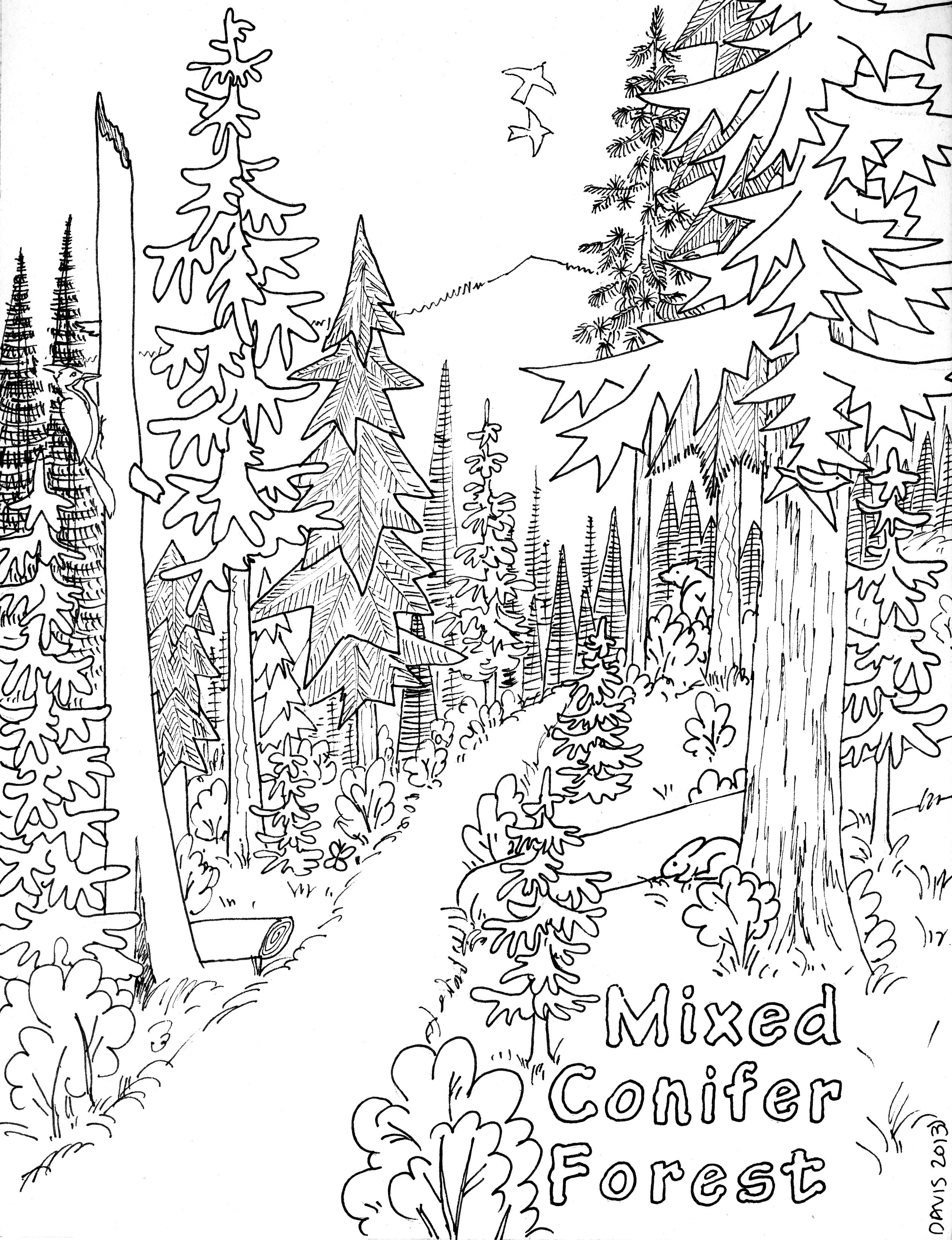 Free coloring pages rainy day - Celebrating Trees Online Coloringcoloring Pages