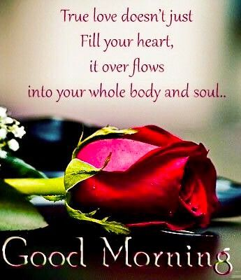 Good Morning My Lady Morning Love Quotes Good Morning Beautiful Quotes Good Morning Love