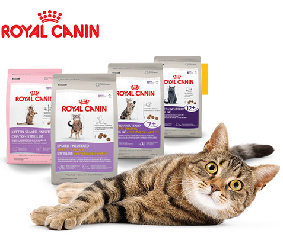 Royal Canin Free Sample Small Dog Food Free Cat Food Cat Food