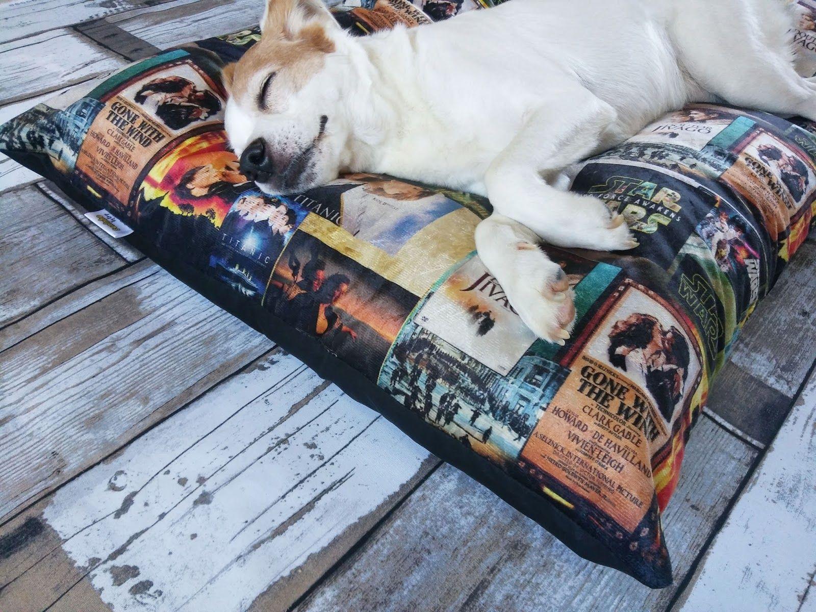 1000 Ideas About Pets Cinema On Pinterest Tim Burton Tim