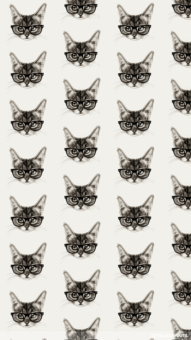 cats tumblr iphone wallpaper google search iphone wallpapers