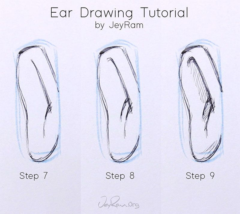 how to draw ears from the front