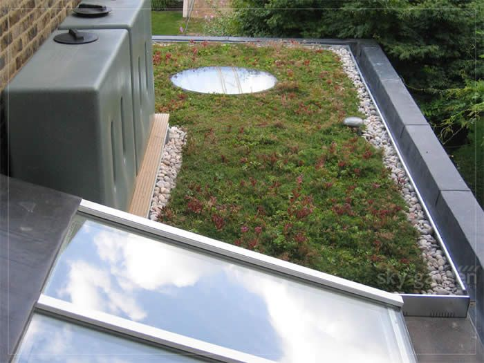 Diy Green Roof Extension Uk Google Search Extension