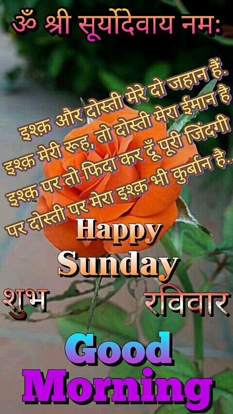 My Sweet Friend Situ Happy Sunday Morning Quotes Good Night
