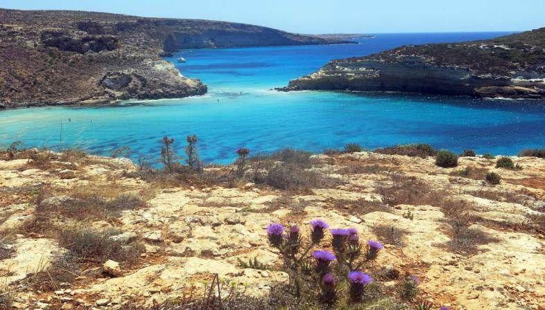 Le Spiagge Piu Belle Di Lampedusa Il Turista Spiagge Paesaggi