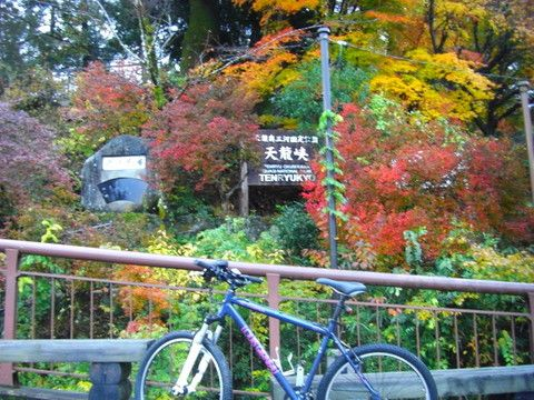 It takes a picture in Iida City Tenryukyo of the autumn tint.