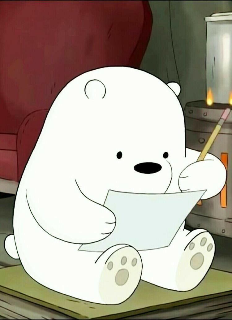 Ursos Sem Curso Ursos Sem Cursos Ursos Urso Polar