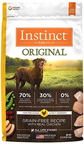 Your Dog S Health With A Natural Diet Dog Food Recipes Best Dry