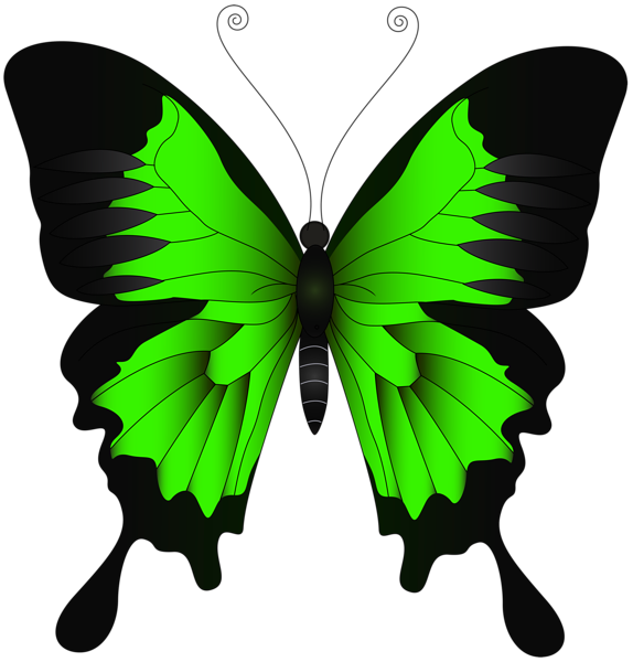 Green Butterfly Png Clip Art Image Butterfly Painting Butterfly Artwork Butterfly Watercolor