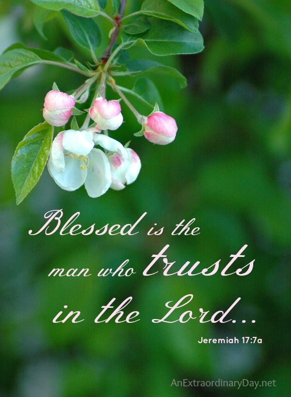 Blessing Quotes Bible: How To Receive God's Blessing... :: Joy Day