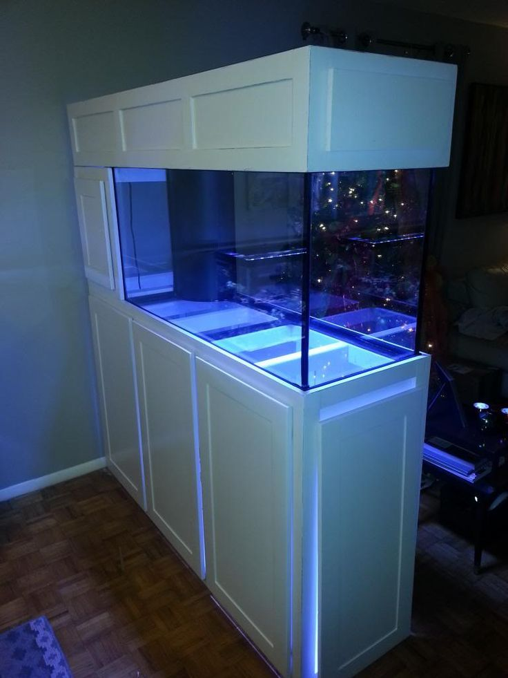 14 Splendid Diy Aquarium Furniture Ideas To Beautify Your Home Cuethat Aquarium Stand Wall Aquarium Diy Aquarium