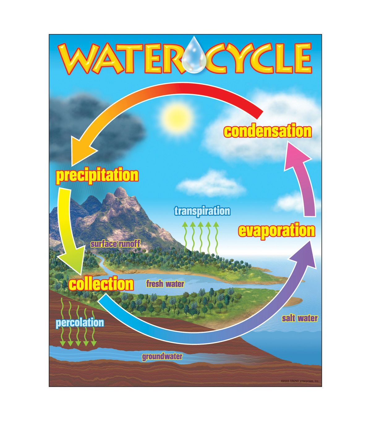 The Water Cycle Learning Chart 17 X22 6pk
