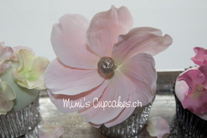 Mimis Cupcakes
