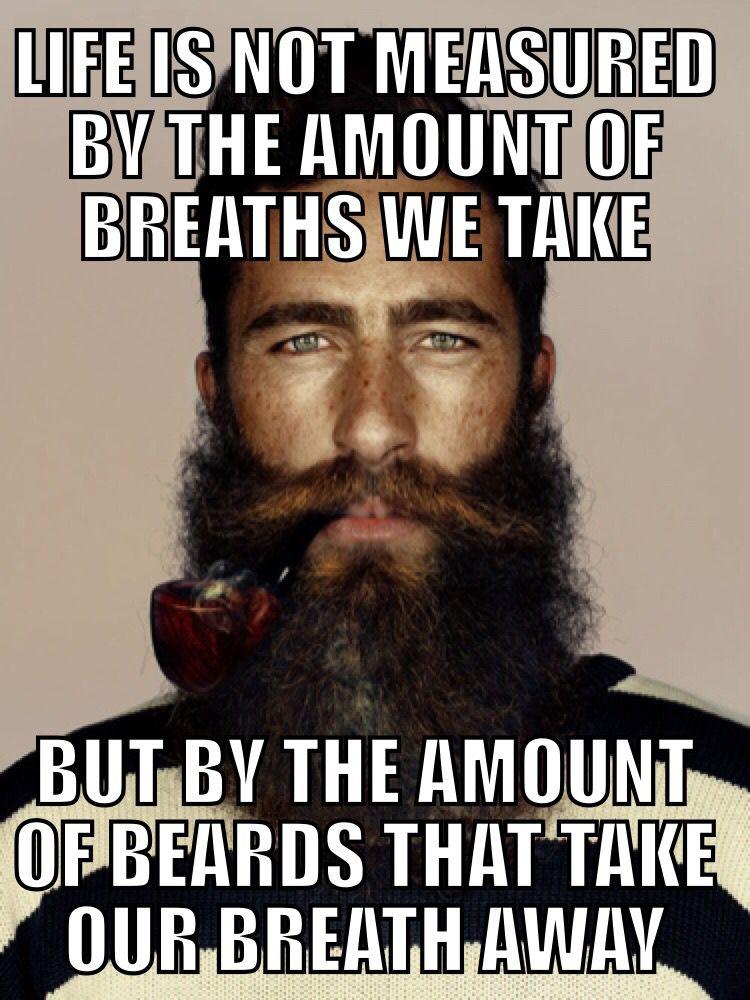 2e1ad24543e7da87daaf3a97c4bb8f11 everyday men with beards are the new sexy! beard memes pinterest