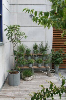 Modern Herb Garden Stair Stepped In Corner For Smaller Patio