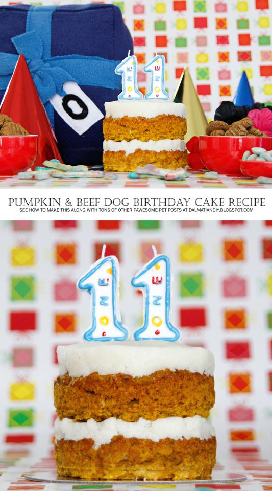 Homemade Dog Birthday Cake Icing Driveeapusedmotorhomefo