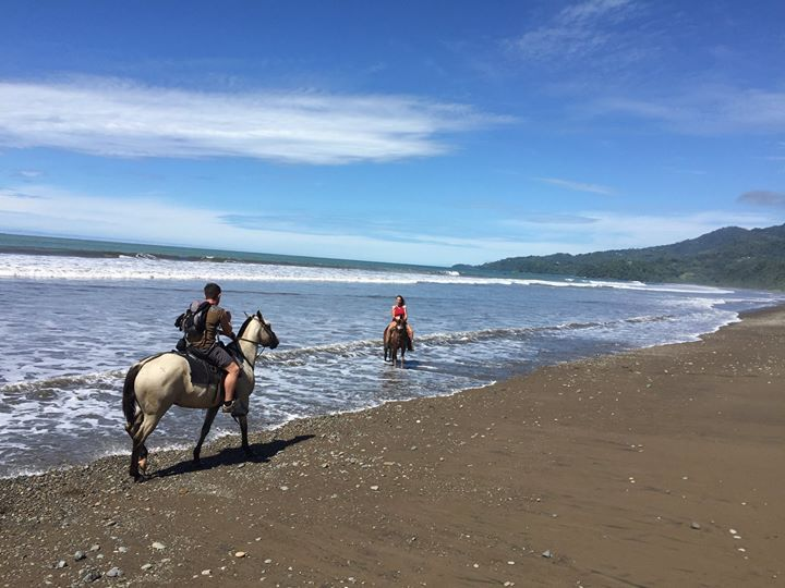 Playa Hermosa horseback riding tour.  #costarica #uvita #vistacelestial #horses #beach