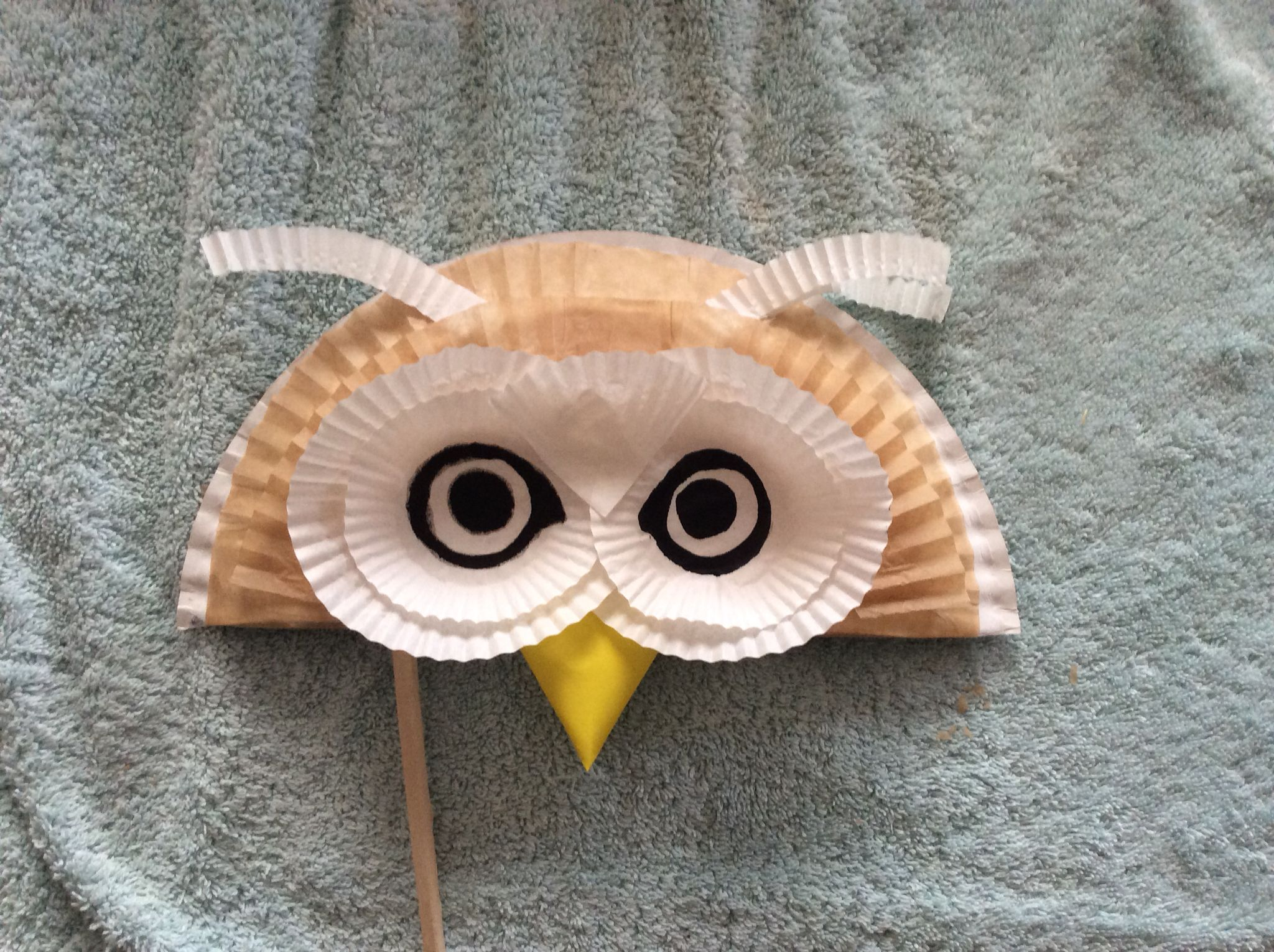 Tawny owl mask. Also made from half a paper plate and some ...