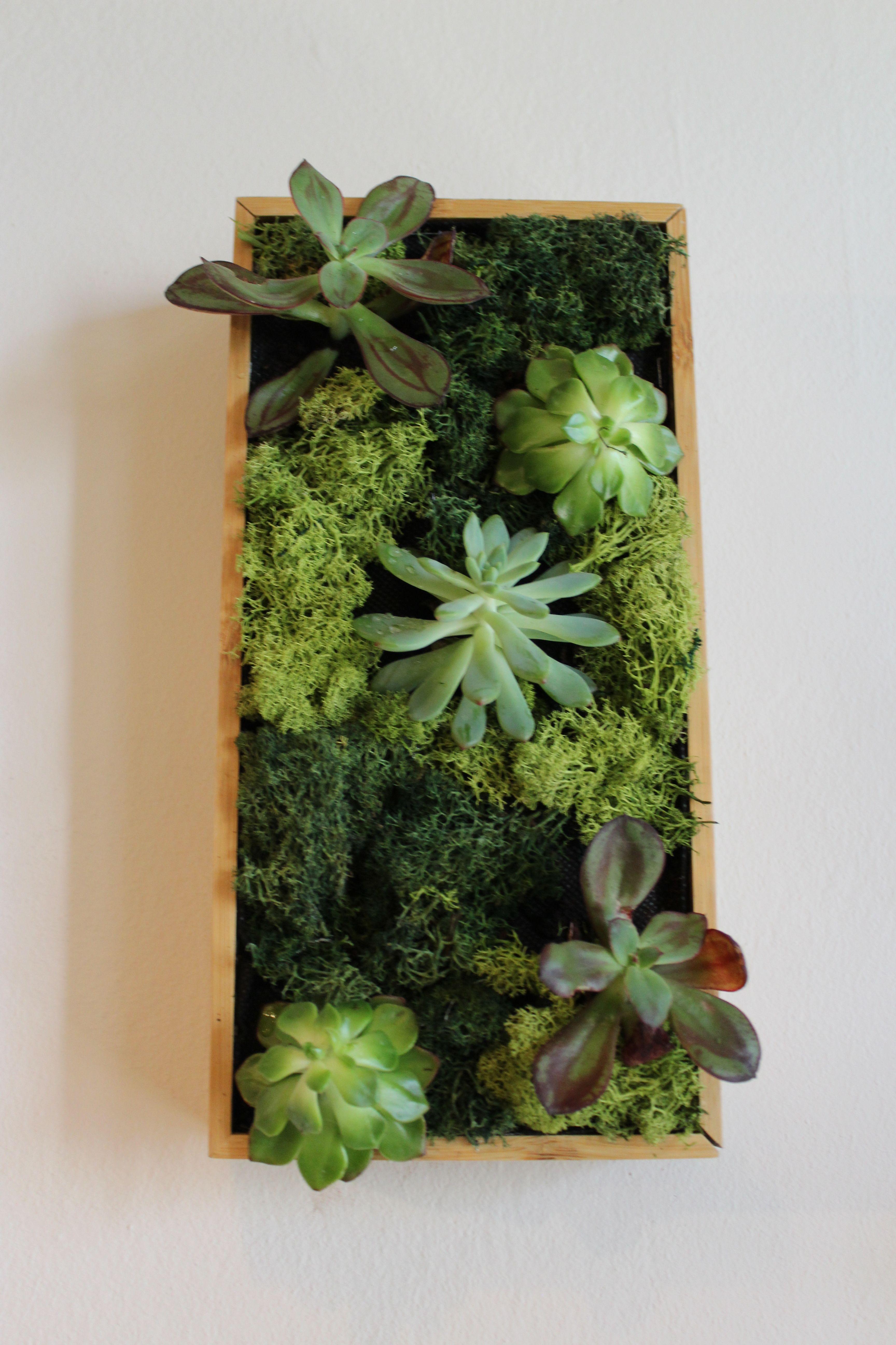 43+ Cuadros verticales de plantas inspirations