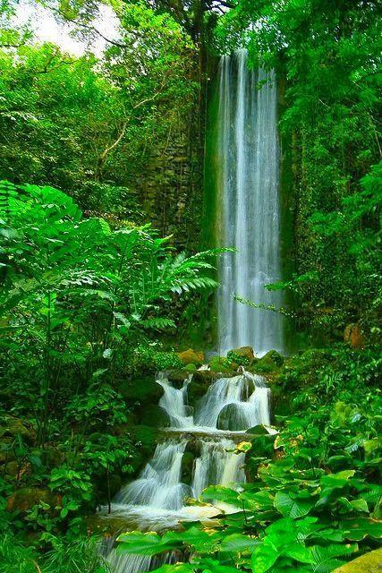 African Waterfall.