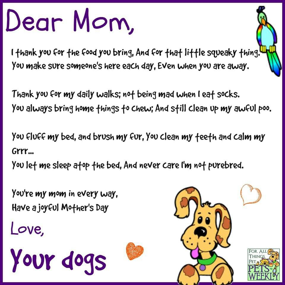 Happy Fur Mother S Day To All You Fellow Dog Moms Or Any Animal Moms Dog Mothers Day Mothers Day Poems Dear Mom