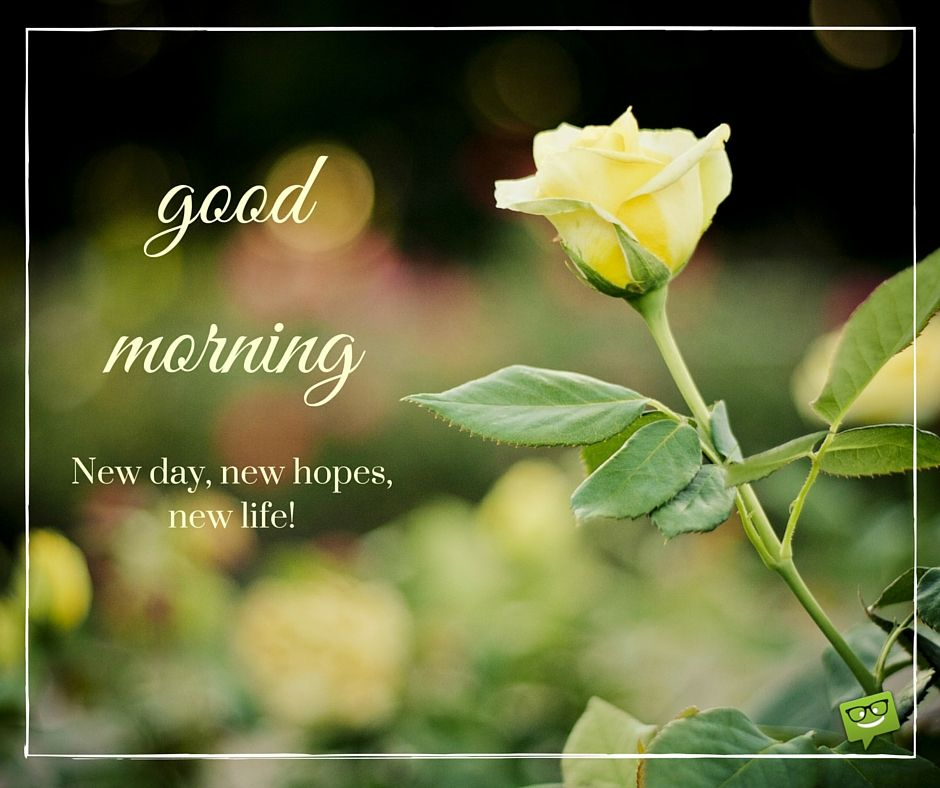 A Wish For The New Day Good Morning Good Morning Good Morning