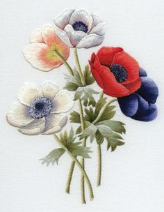 *EMBROIDERY ~ Trish Burr Embroidery Kit: anemones