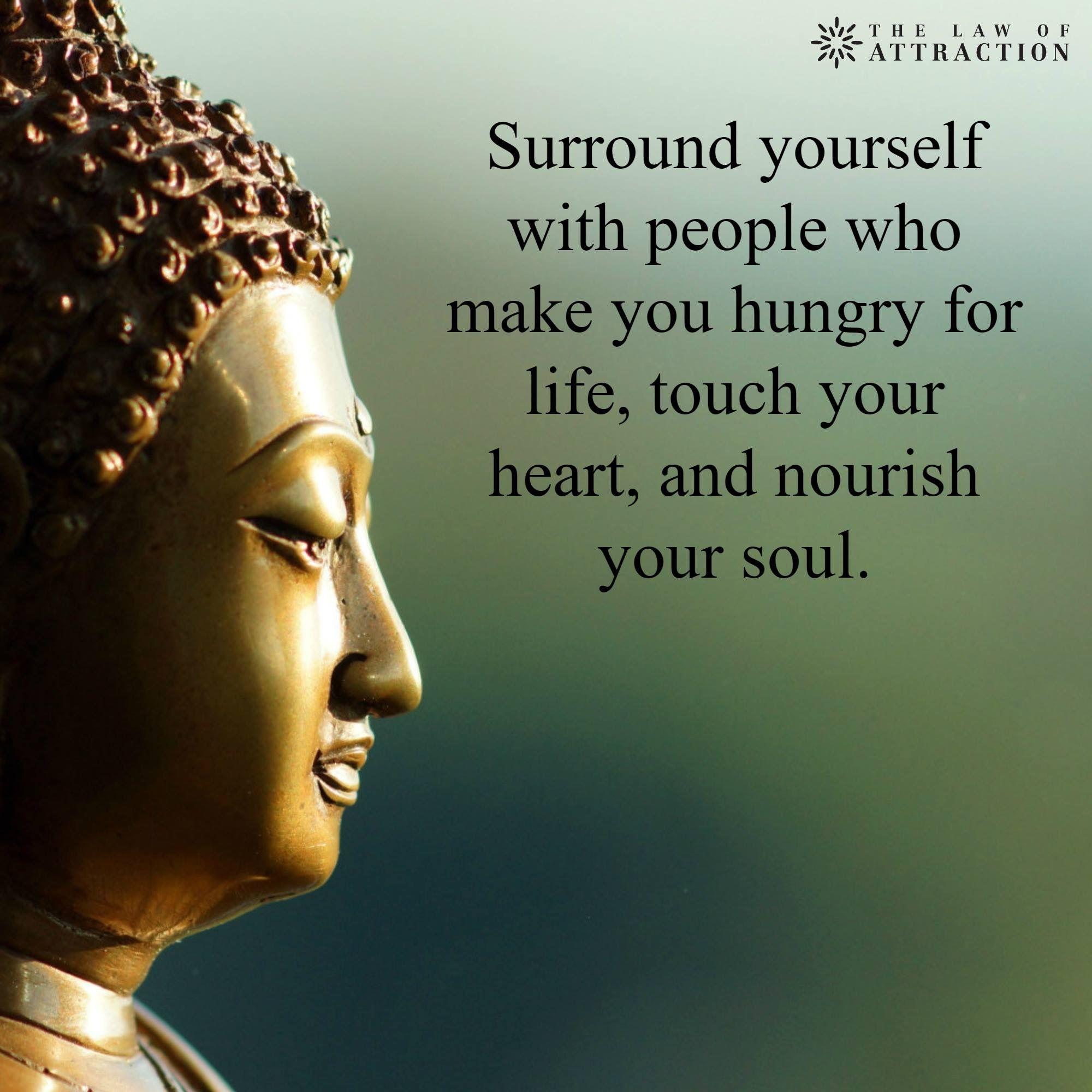 Hungry For Life. Life TouchBuddha TeachingGood QuotesInspirational ...