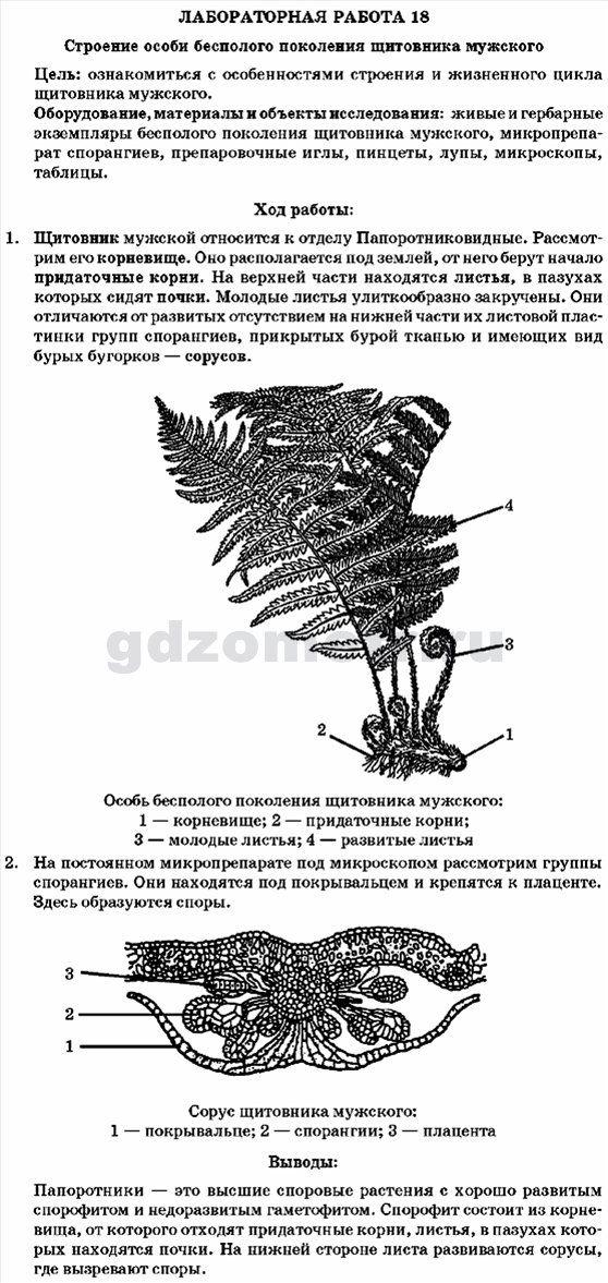 Лабораторные работы по биологии 7 класс м.м мусиенко