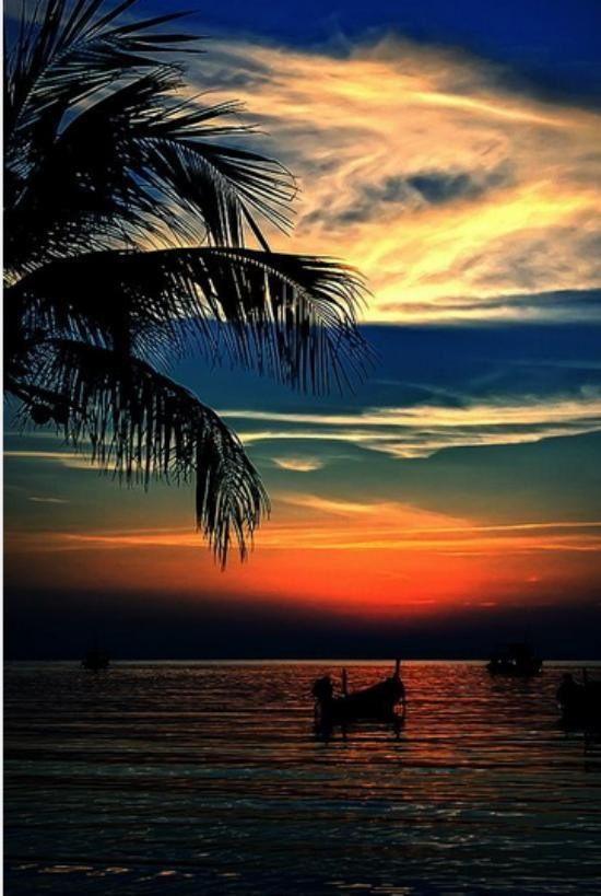 Sunset Beach Nature Beautiful Nature Beautiful Sunrise