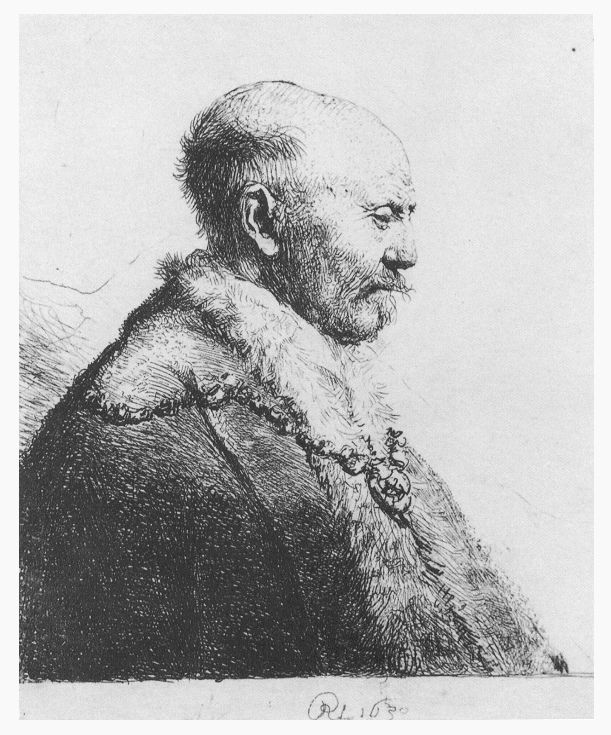 Retrato de perfil de homem calvo. Gravura, 1630