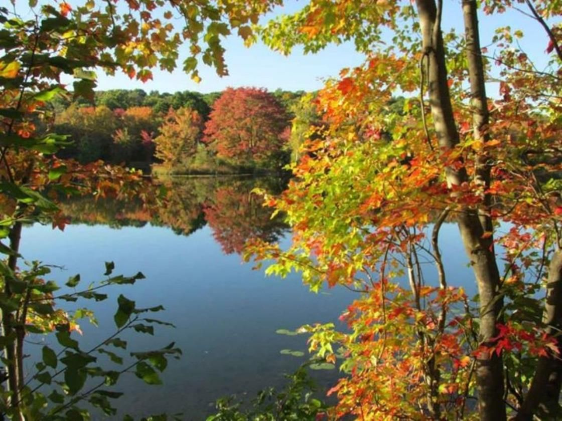Posted by David Peppi, Nescopeck State Park  Post your favorite fall photos to: http://photos.weatherbug.com/photos/