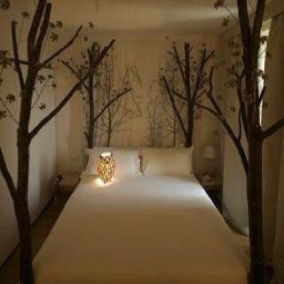 Modern Nursery Wallpaper Girl Best 25 Nature Theme Bedrooms Ideas On Pinterest Earthy