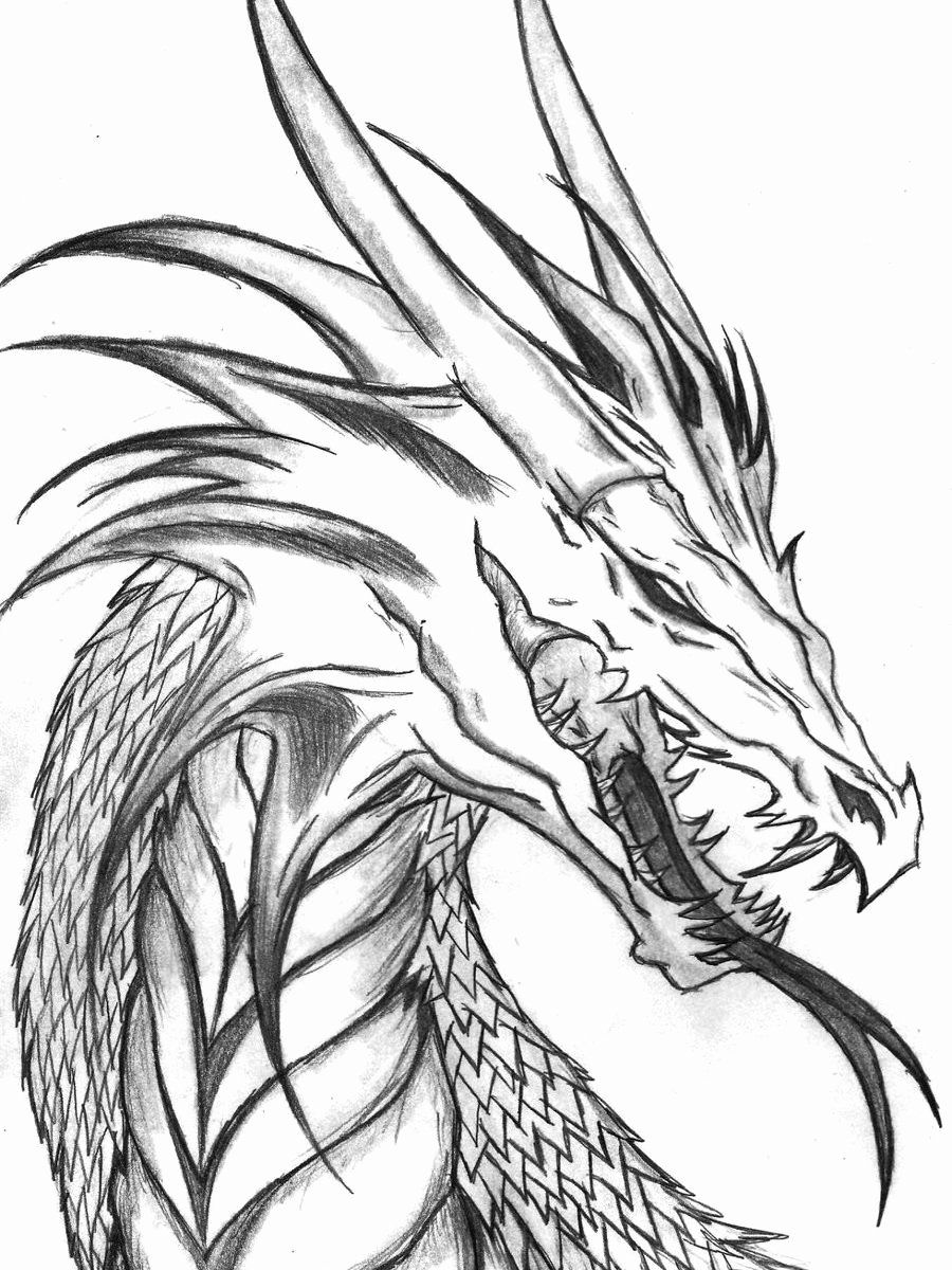 Chinese Dragon Coloring Sheets Lovely Coloring Book Ideas Realistic Dragon Coloring Pages Realistic Dragon Dragon Coloring Page Animal Coloring Pages