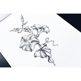 Morning Glory Tattoo Black And White Google Search Morning Glory Tattoo Flower Tattoos Tattoos