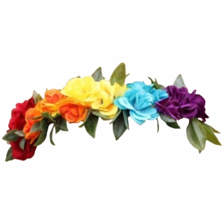 Flower Crown Transparent Png Transparent Flowers Crown Tumblr Flower Crown