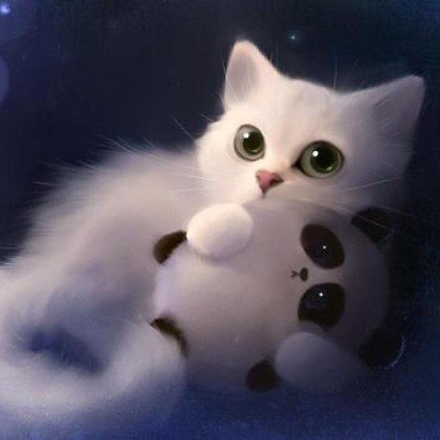 Kitty Cat On Instagram Incredibly Cute White Cat With Big Shiny Eyes Holding A Toy Panda Cute Anime Cat Cat Art Anime Cat Anime white cat wallpaper