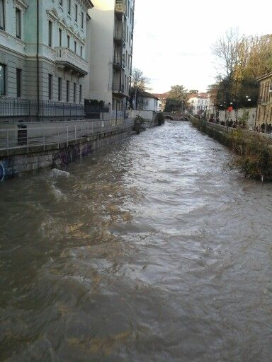 Flooded Monza