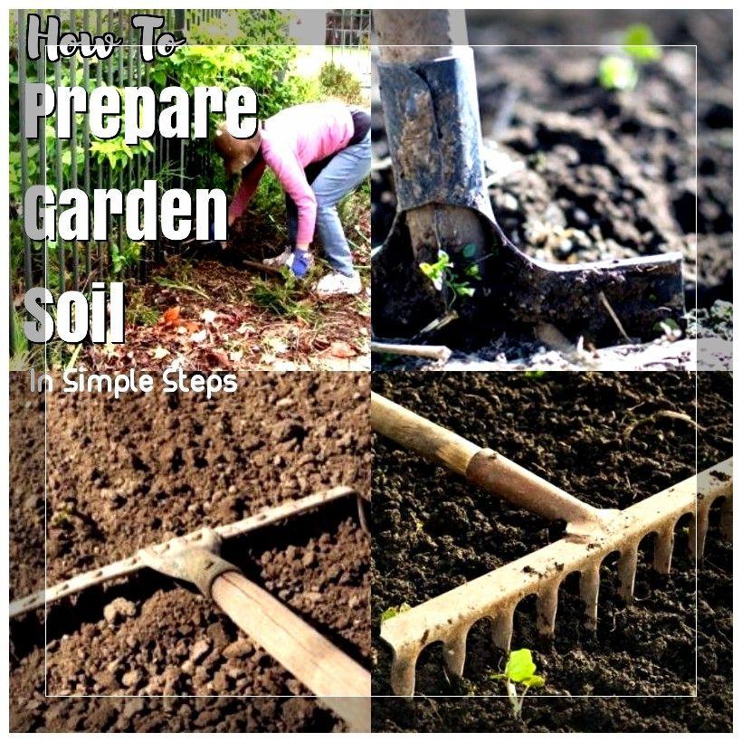2e22743b840da48cc3f05866972ffa3a - How To Prepare Georgia Soil For Gardening