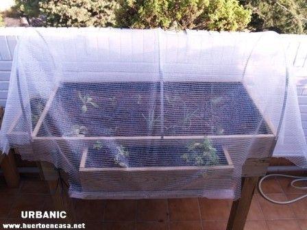 C mo hacer un invernadero casero para huerto urbano - Mini invernadero casero ...